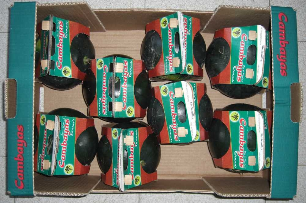 Sandía mini sin semillas envases una unidad en caja